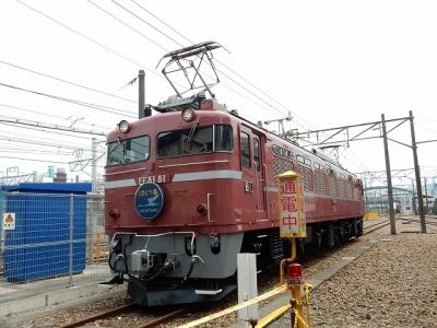 DSCN5077.jpg