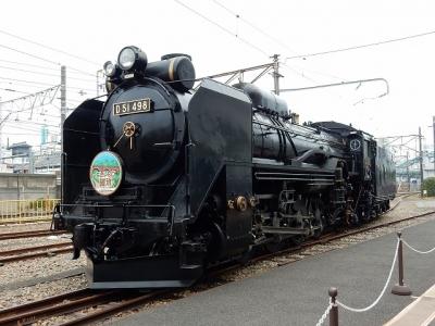 DSCN5088.jpg