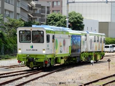 DSCN5255.jpg