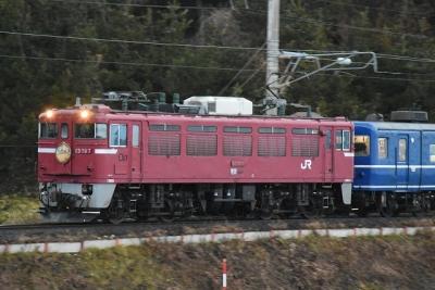DSC_4380.jpg