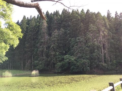 2016-06-14_15-02-09.jpg