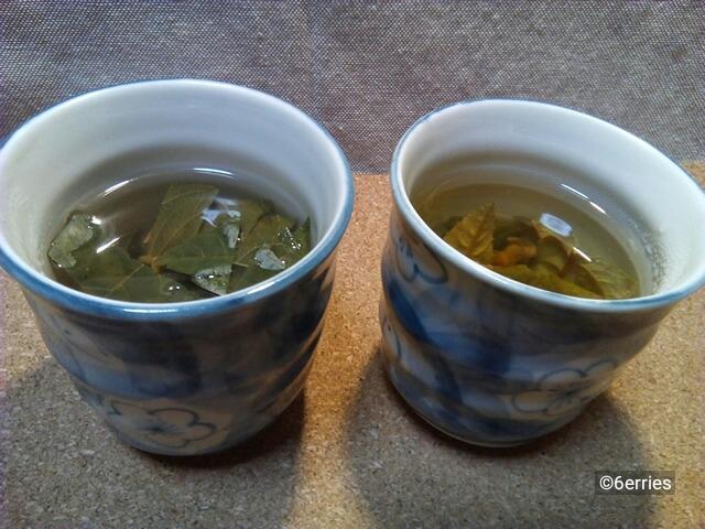 びわ茶(古葉と若葉)