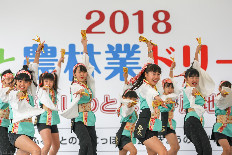 Tseimon2018SKDF01-12.jpg