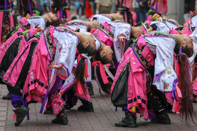 danceCR018kamiitaA03-13.jpg
