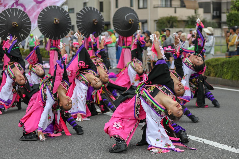 danceCR2018tokorozawaY02-4.jpg