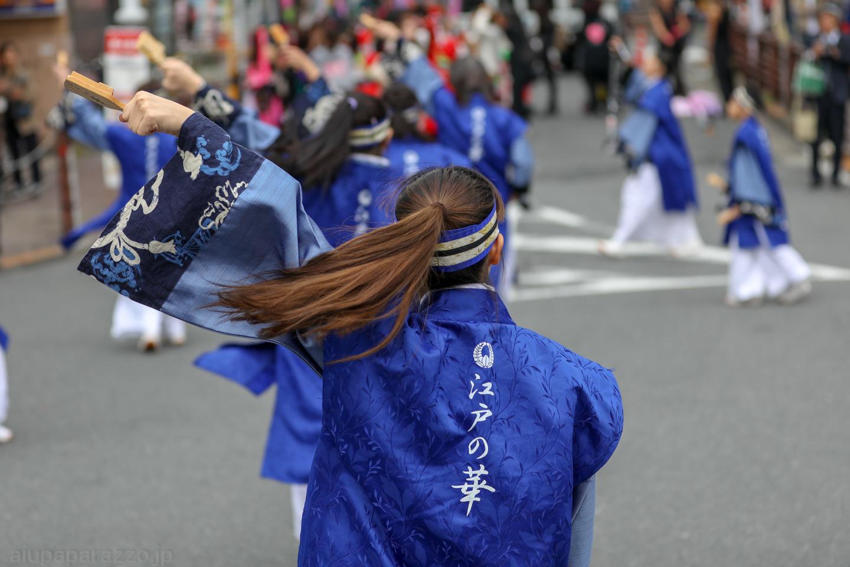 edonohana2018kamiitaYeki-9.jpg