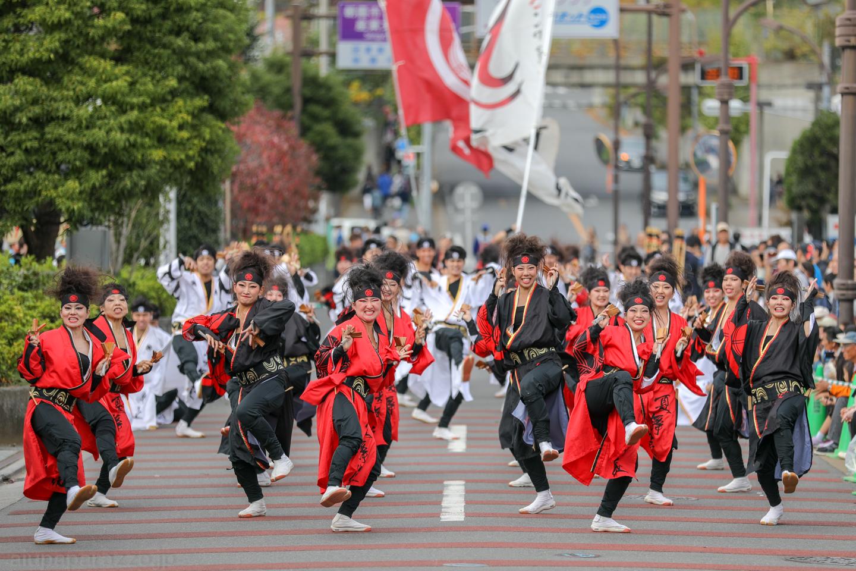 kabuto2018oyachaiam01-2.jpg