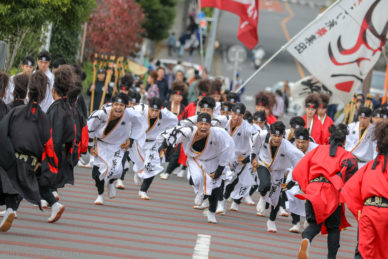 kabuto2018oyachaiam01-3.jpg
