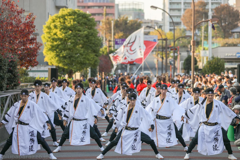 kabuto2018oyachaipm01-5.jpg