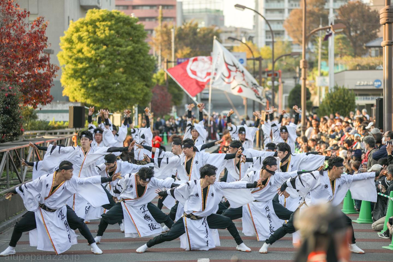 kabuto2018oyachaipm01-8.jpg