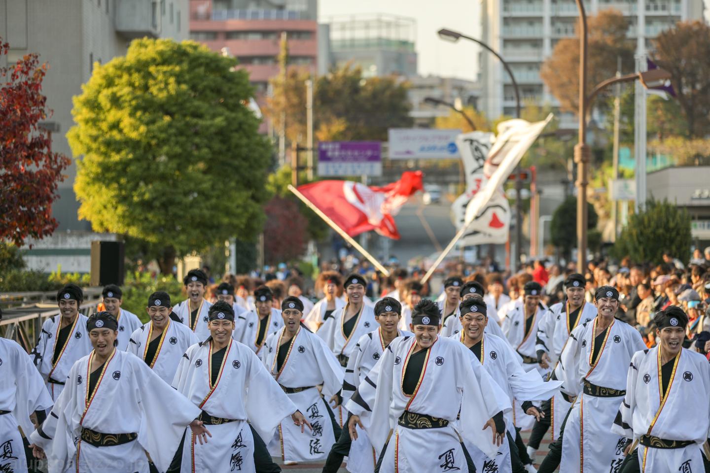 kabuto2018oyachaipm02-11.jpg