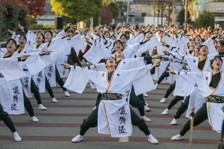 kabuto2018oyachaipm02-18.jpg