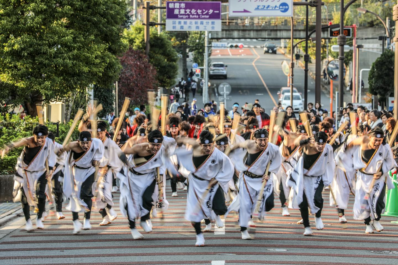 kabuto2018oyachaipm02-7.jpg