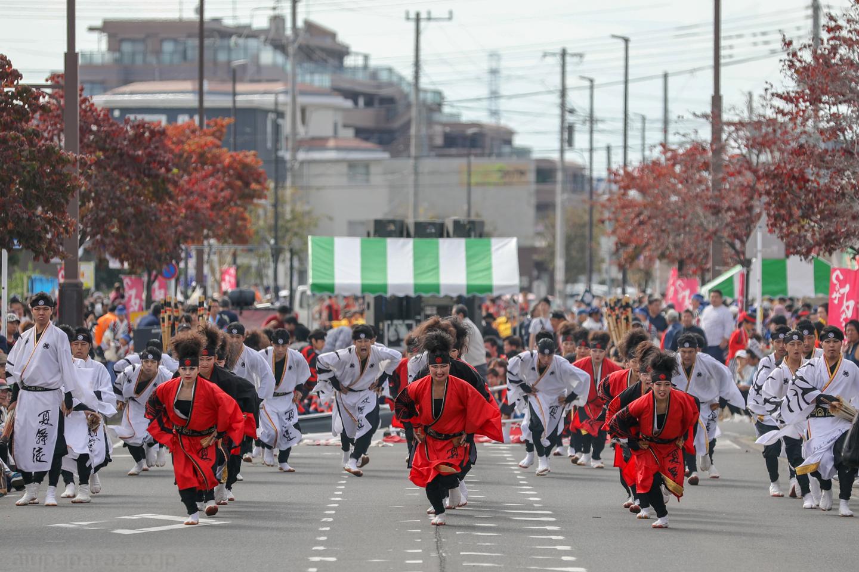 kabuto2018tsuruse201-3.jpg