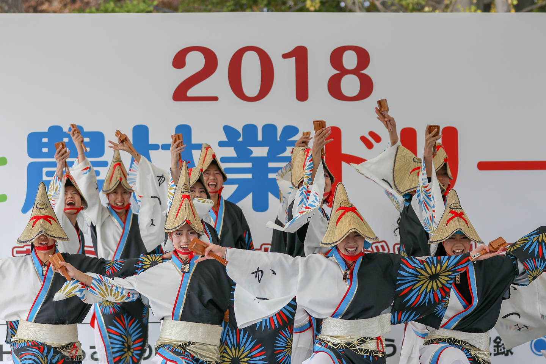 katsumi2018SKDF01-1.jpg
