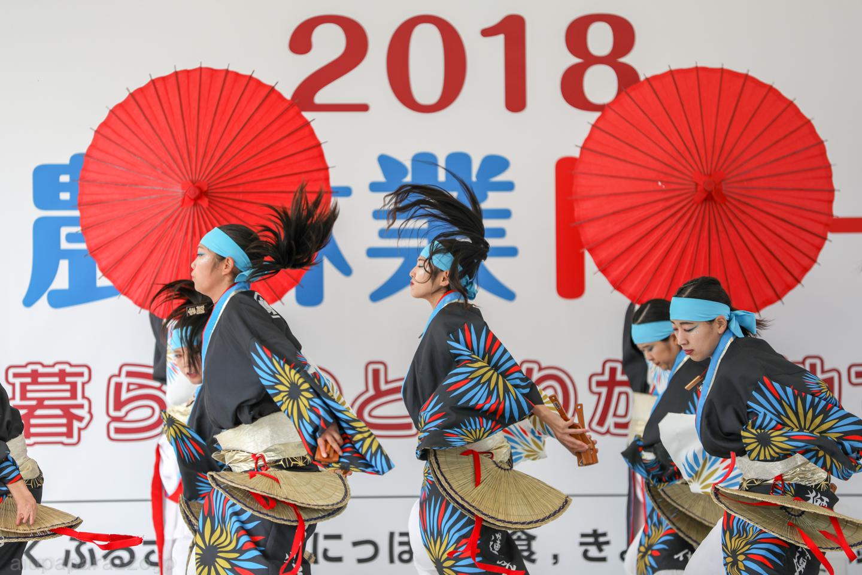 katsumi2018SKDF01-14.jpg