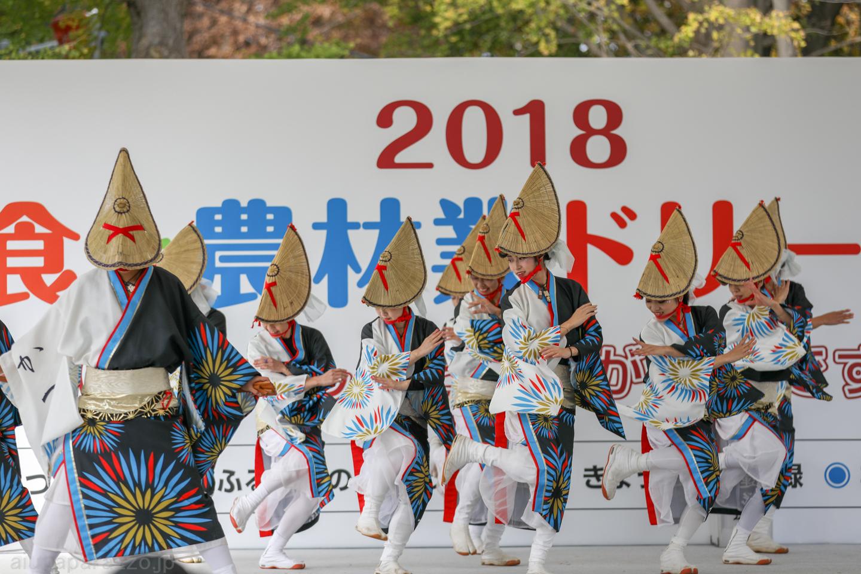 katsumi2018SKDF01-3.jpg