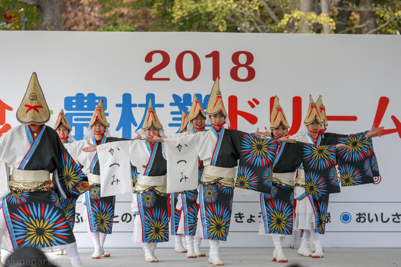 katsumi2018SKDF01-4.jpg