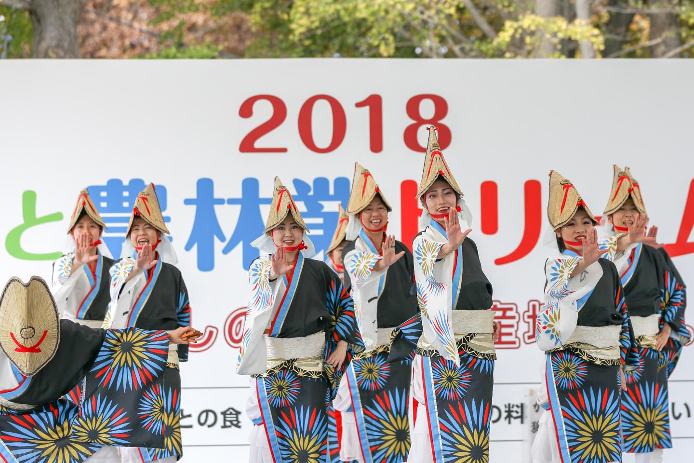 katsumi2018SKDF01-8.jpg