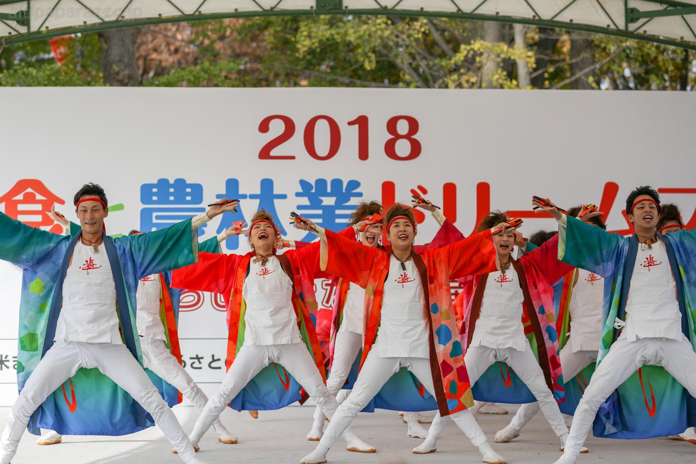 yuwa2018sainokuni01-18-3.jpg