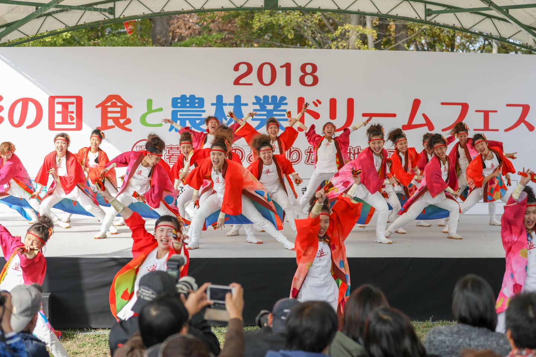 yuwa2018sainokuni02-1-3.jpg