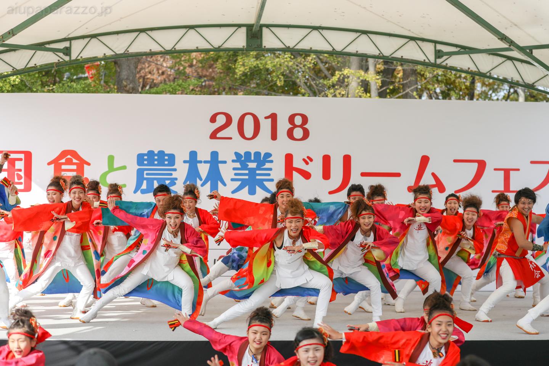 yuwa2018sainokuni02-11-3.jpg