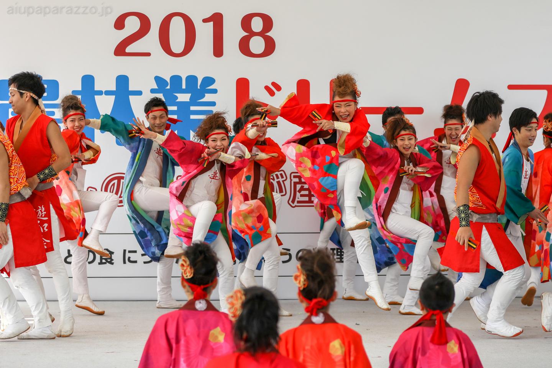 yuwa2018sainokuni02-5-3.jpg
