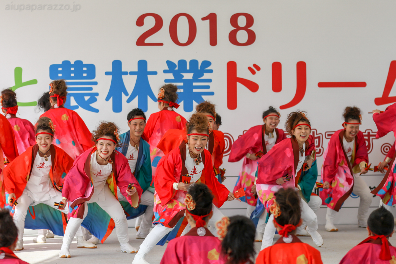 yuwa2018sainokuni02-8-3.jpg