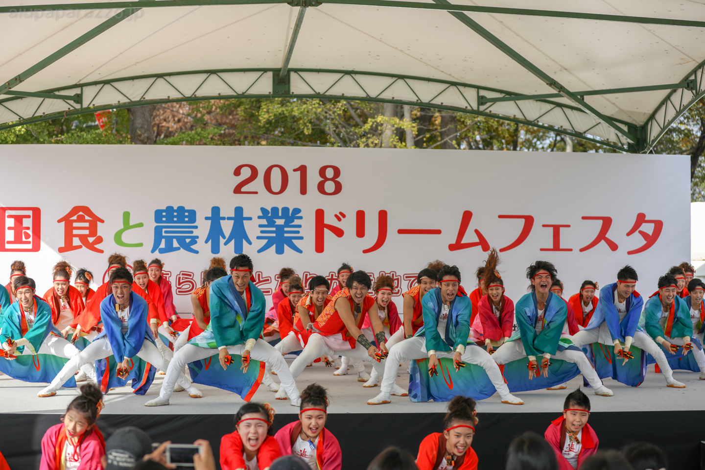 yuwa2018sainokuni03-1-3.jpg