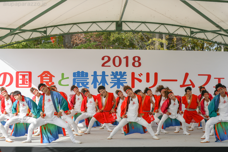 yuwa2018sainokuni03-7-3.jpg