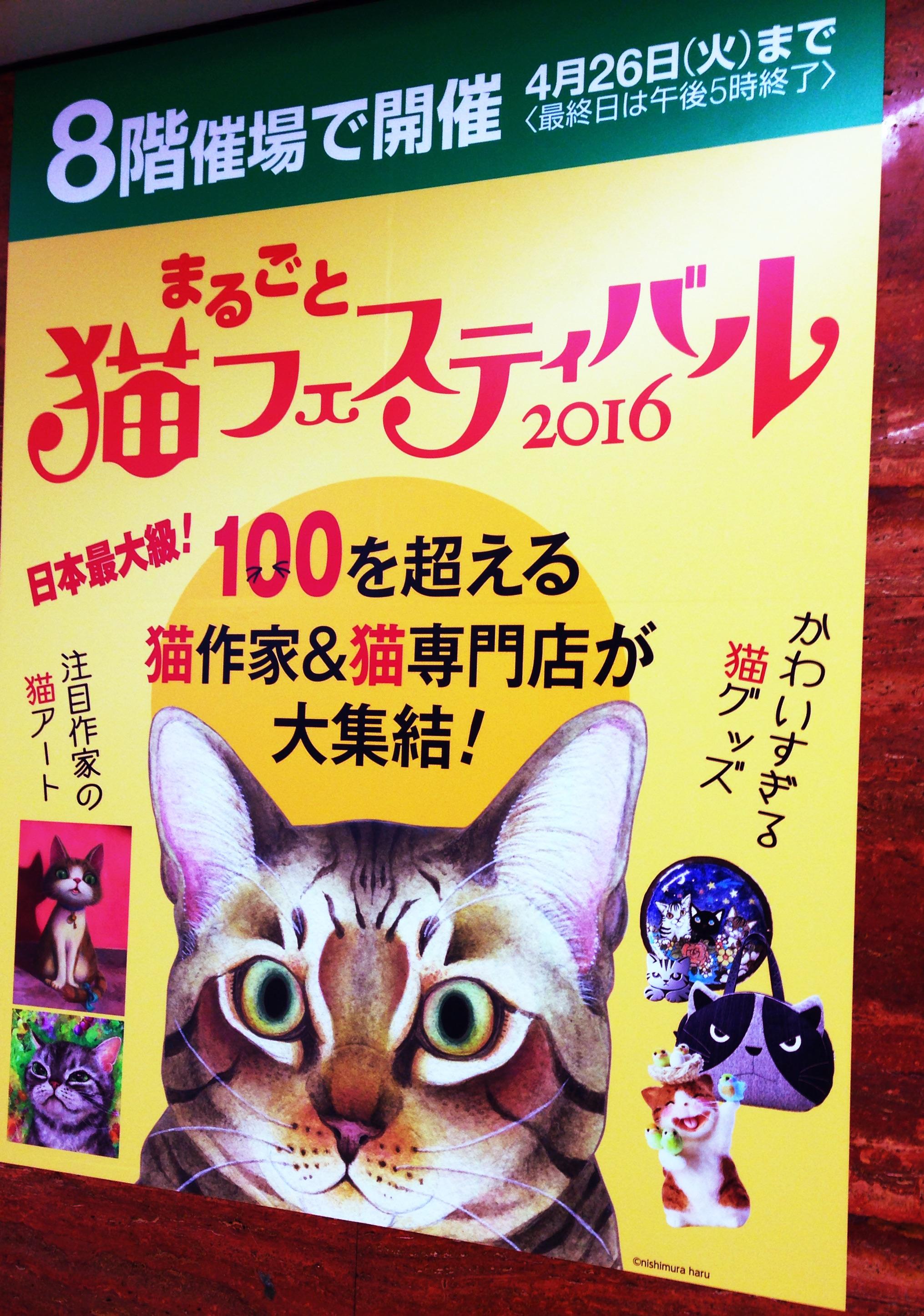 猫フェス2016ー!