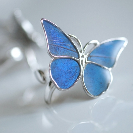 モルフォ蝶のSilverリング