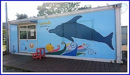 Dolphin farm (15)