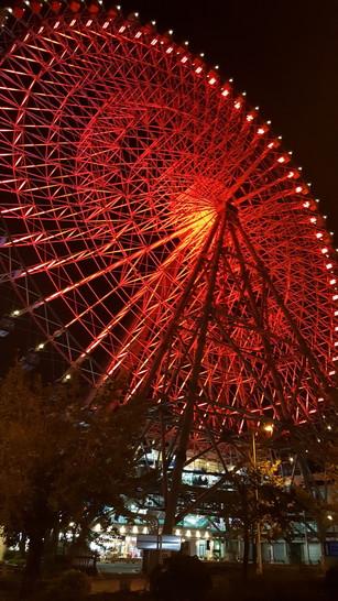 Tempozan Ferris Wheel (14)