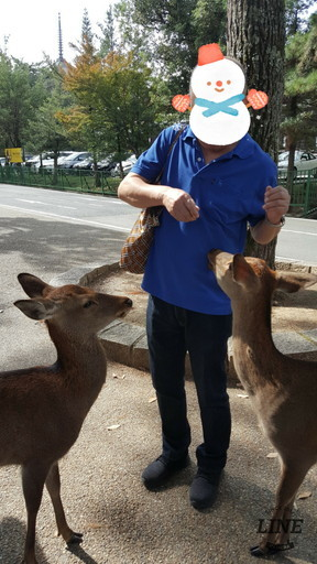 give food to deer at Nara (1)