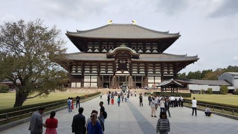 奈良 東大寺 ミルキー (4)