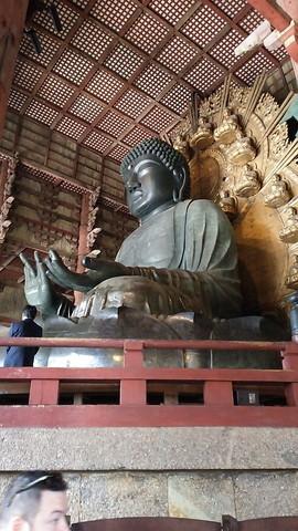 奈良 東大寺 ミルキー (2)