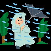 天候・暴風雨