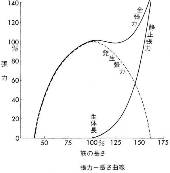 長さ張力曲線