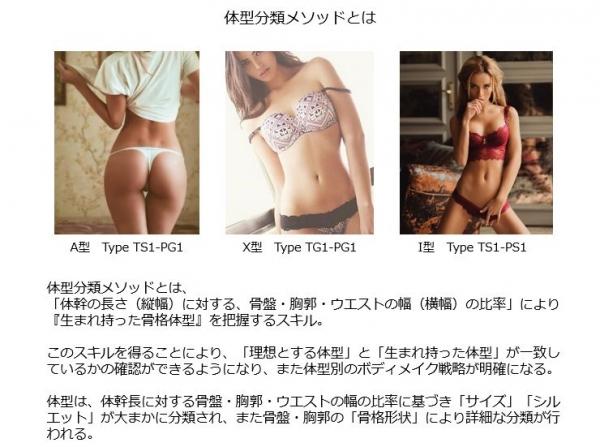 体型分類1