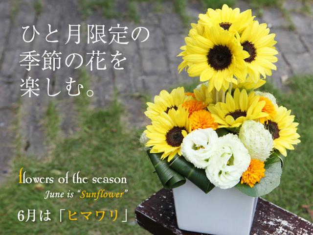 ひまわり 花束 アレンジ 元気 プレゼント