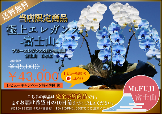 日本一 世界遺産 胡蝶蘭 青 サプライズ 富士山