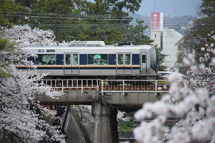 20160403_shukugawa_park-08.jpg