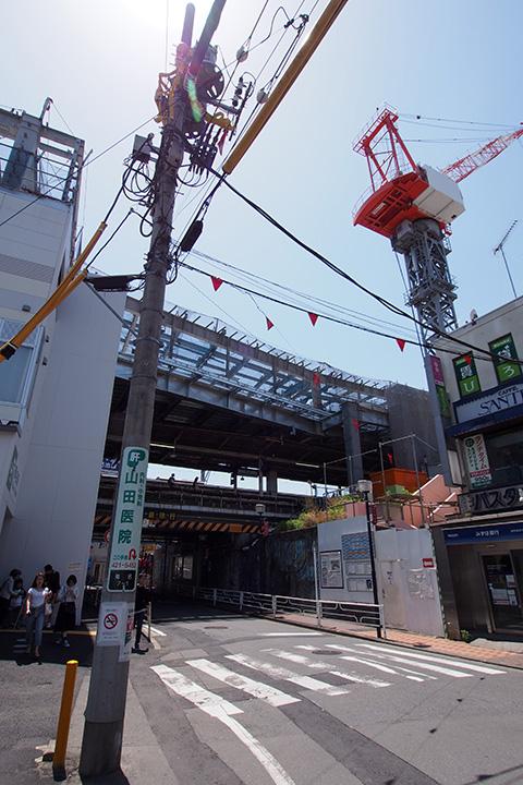 20160505_kikuna-05.jpg