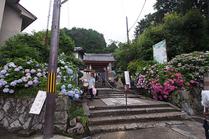20160619_yatadera_temple-01.jpg