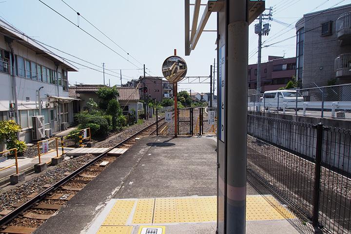 20160626_otori-03.jpg