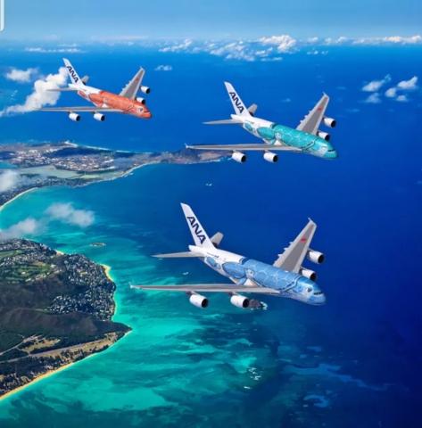 【海亀が空を飛ぶ】全日空、世界最大の旅客機 5月24日ホノルル線に就航【A380】