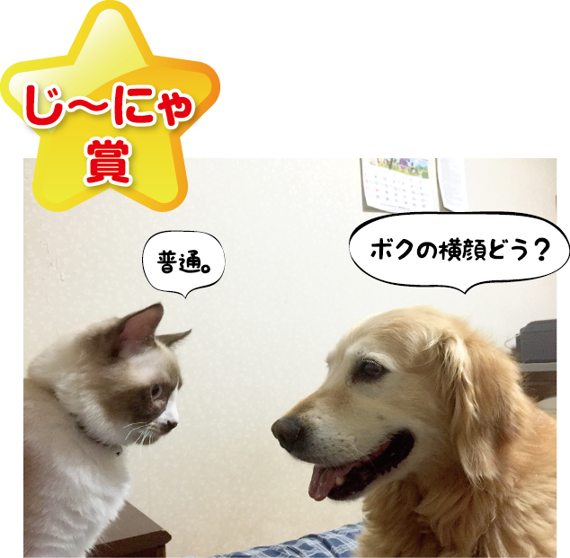 201609291053285f0.png