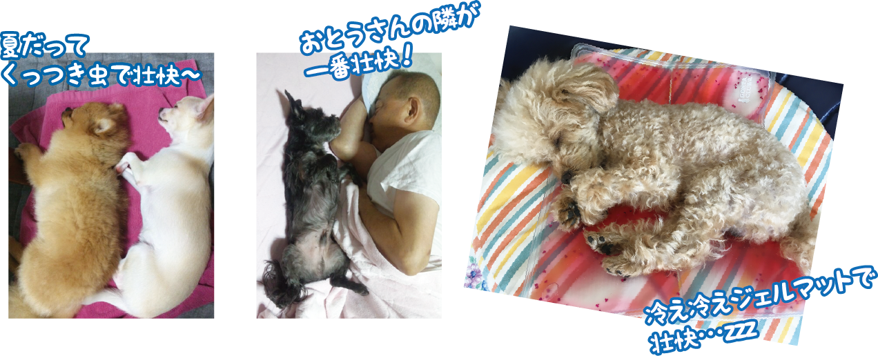 201609291053403b0.png
