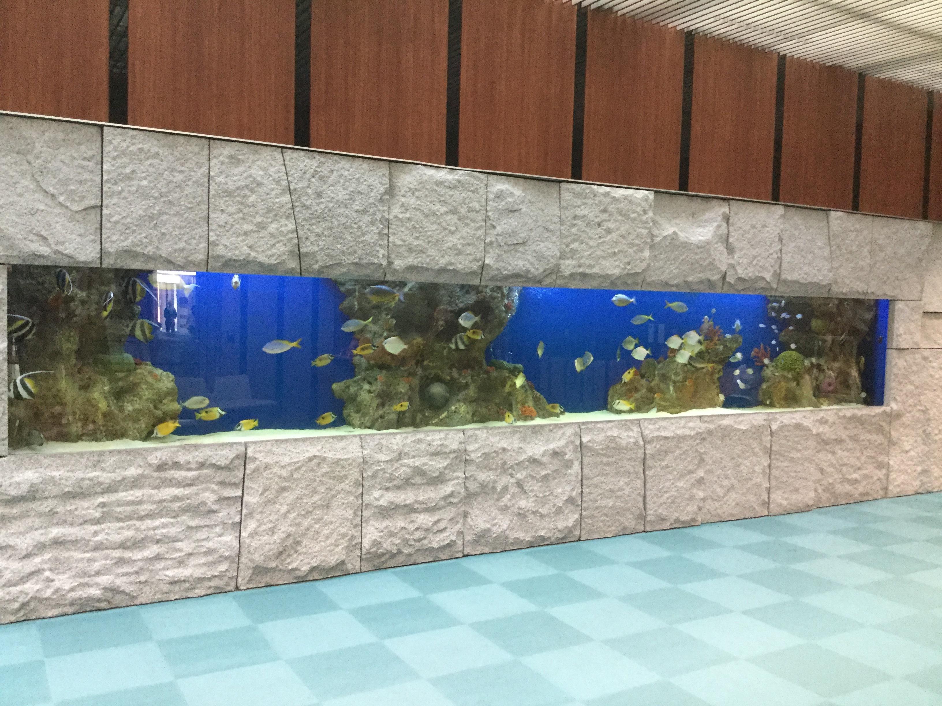 会津中央病院水槽
